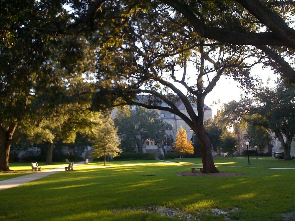 tulane campus in fall