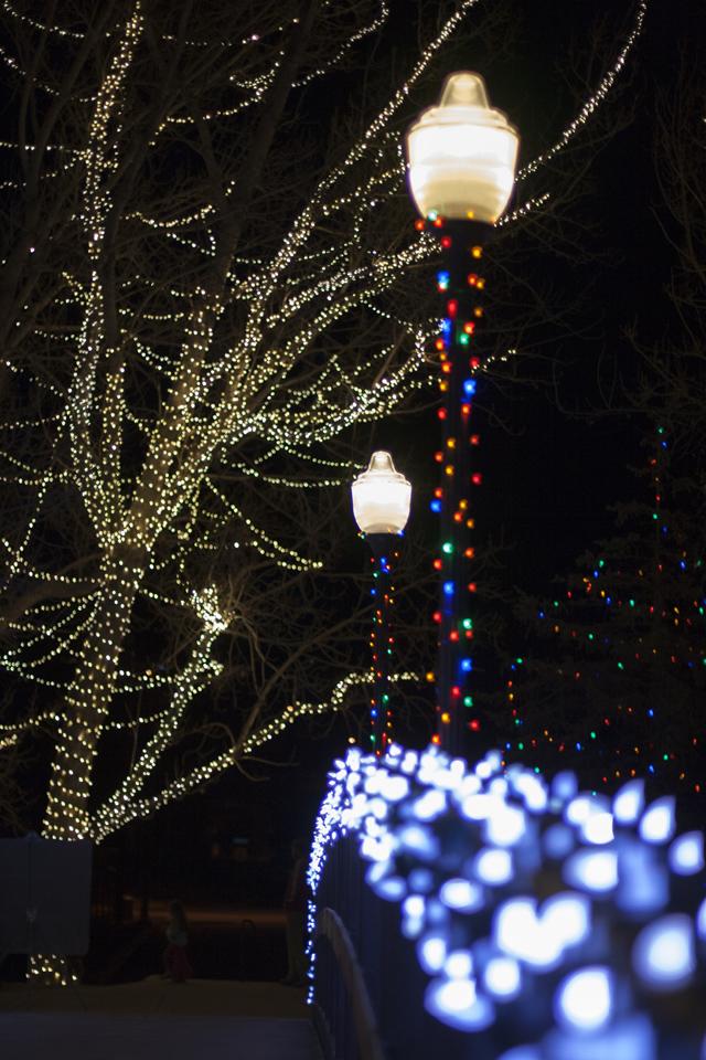 13_Christmas-lights-golden