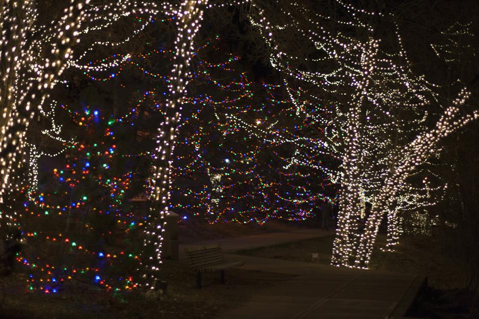 14_Christmas-lights-golden