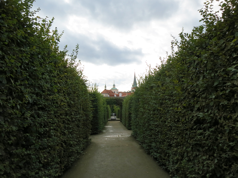 4_Prague-Hedges