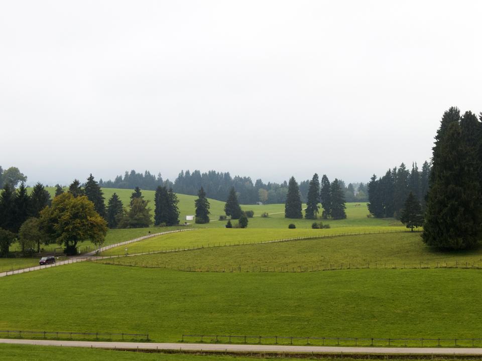 2_Rolling-green-hills-fog-Bavaria