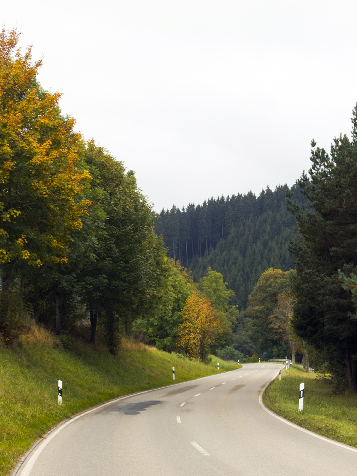 5_Black-Forest-Germany-Road-Fall-Foliage