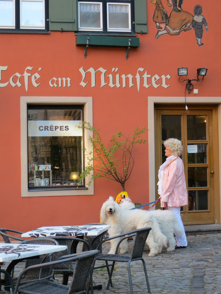 5_Lady-and-dogs-Germany