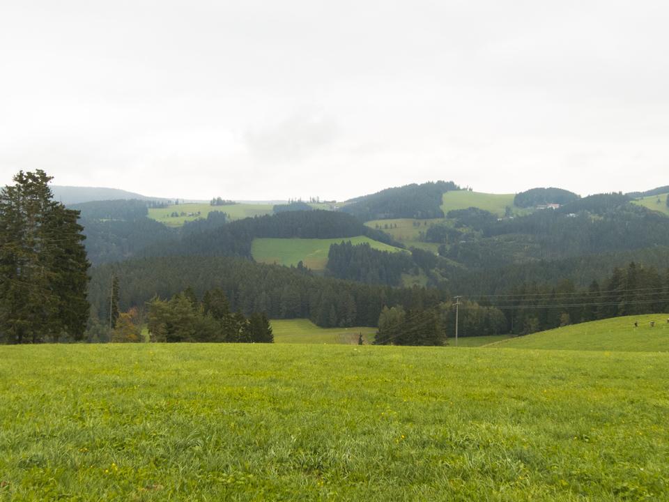 6_Black-Forest-Hills-landscape