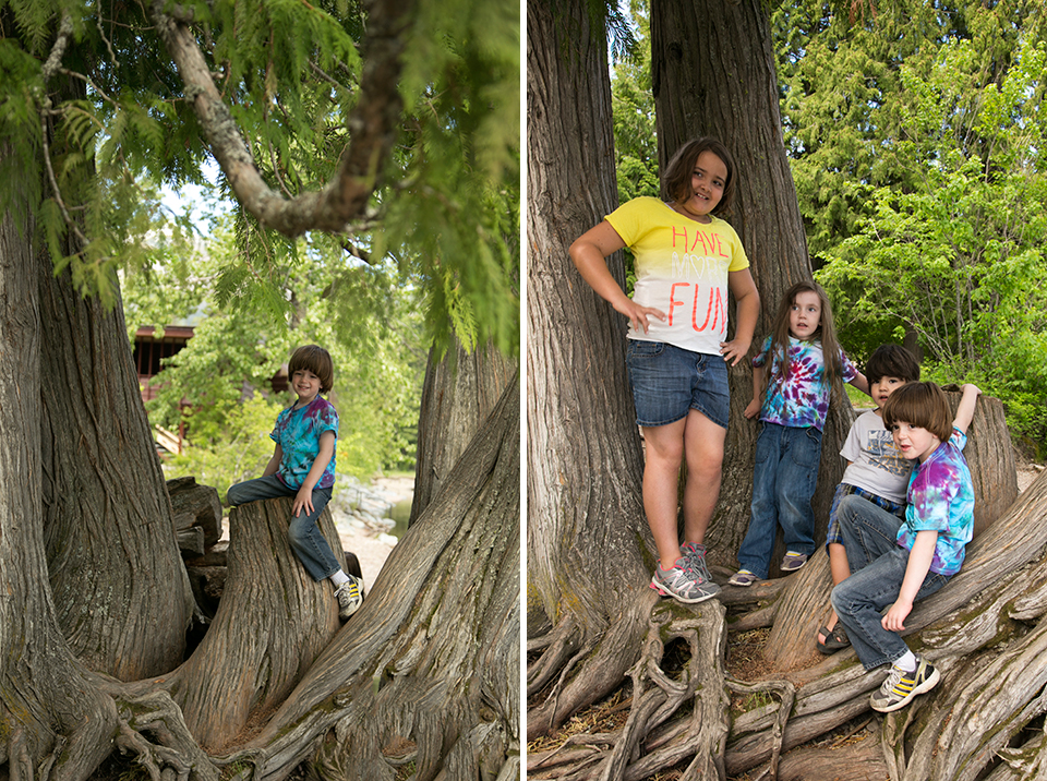 9_kids-and-massive-tree
