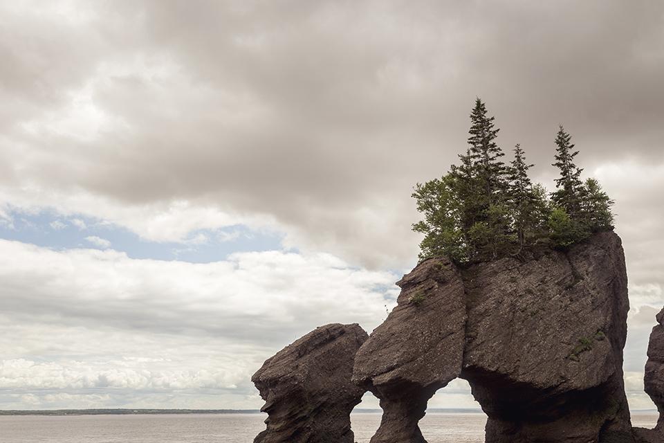flower-pot-rocks-hopewell