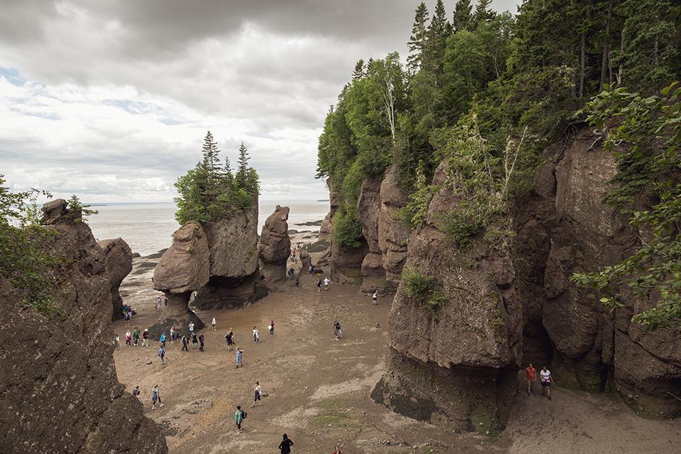 looking-down-hopewell-rocks