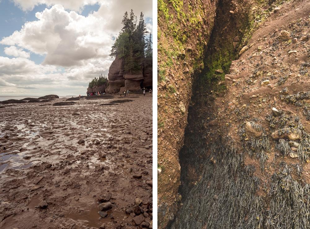 Ocean-Floor-Bay-Fundy-Hopewell