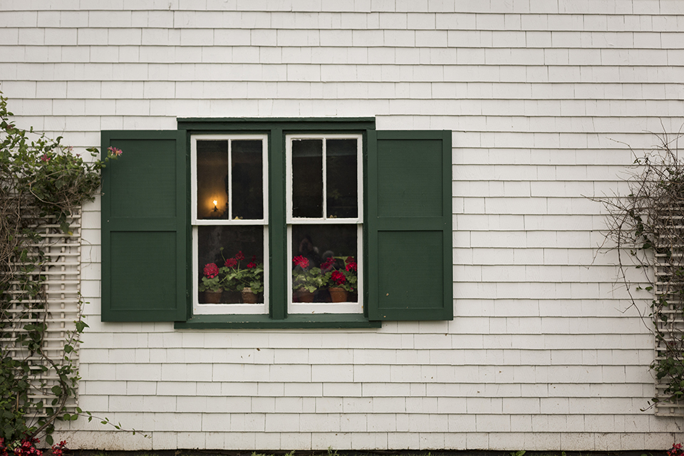 Green-Gables-Bonnie-Geraniums