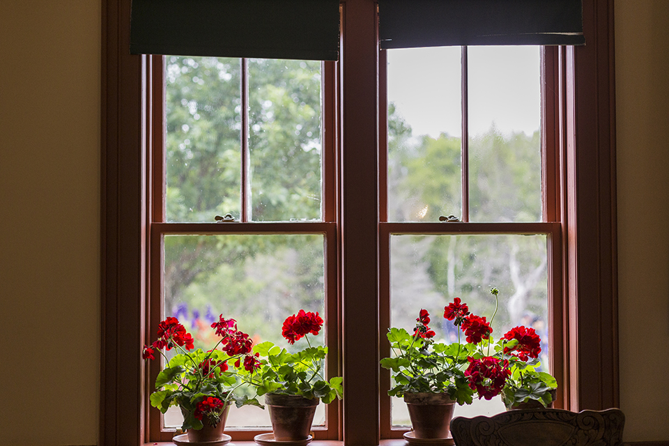 Green-Gables-Interior-Bonnie-Geraniums