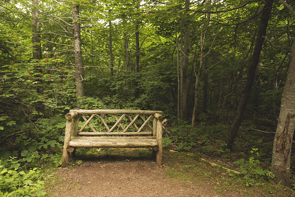 Haunted-Woods-Bench-Green-Gables