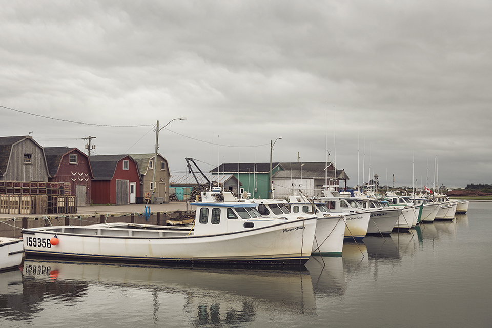 Malpeque-Harbor-Fishing-Boats