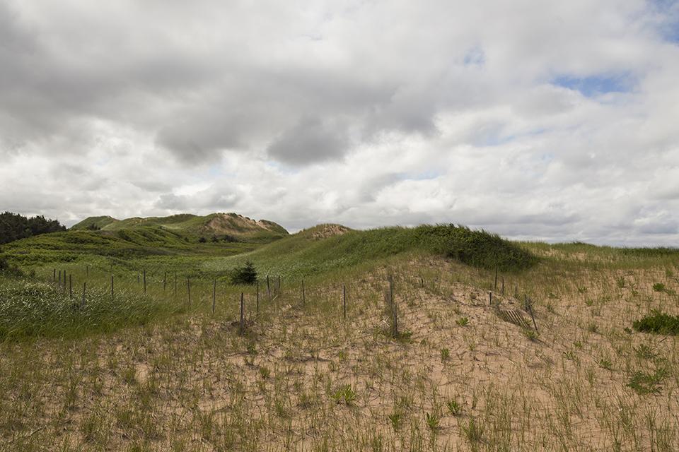 PEI-Grassy-Dunes