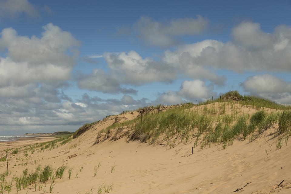 PEI-Sand-Dunes