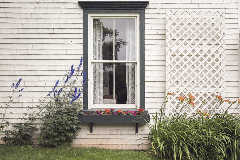 Silver-Bush-Window