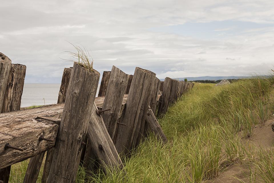 Weathered-Fence-Nova-Scotia