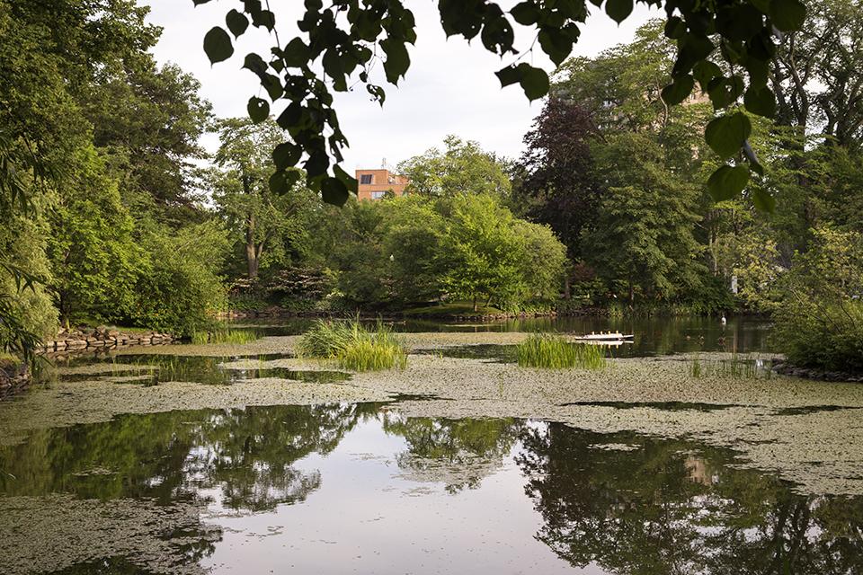 Halifax-Gardens-Titanic-Pond