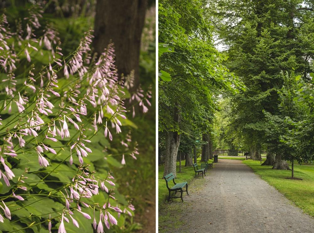 Shady-Benches-Halifax-Public-Gardens