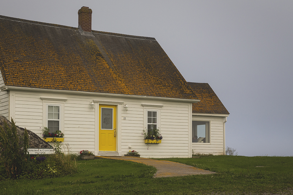 Cottage-Yellow-Door
