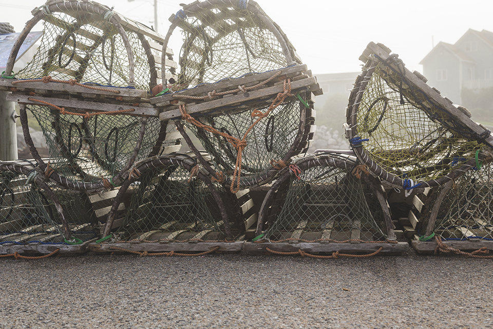 Lobster-Traps-Canada